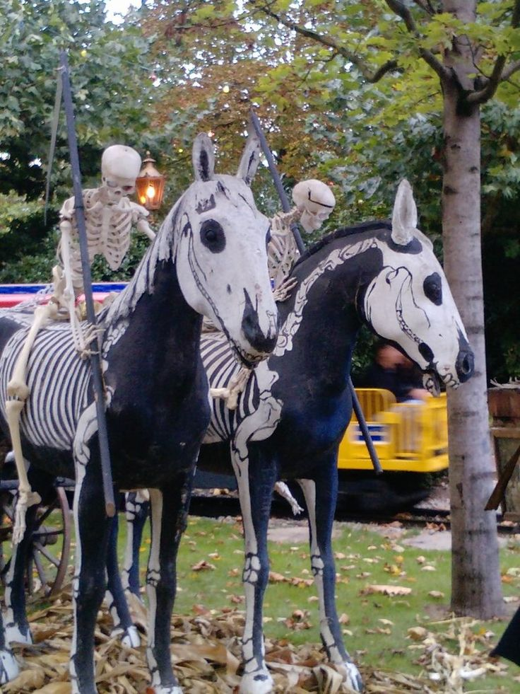 Horse picture with a Halloween Theme #Halloween Equine #Halloween Horses