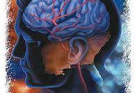Obat Penyumbatan Pembuluh Darah di Kepala yang alami, dengan menggunakan herbal Ace Maxs, mampu melancarkan peredaran darah serta mencegah penyakit stroke terjadi. Anda berminat? Pesan langsung via sms, obat langsung kirim, bisa bayar setelah obat sampai (pemesanan 1-2 botol)
