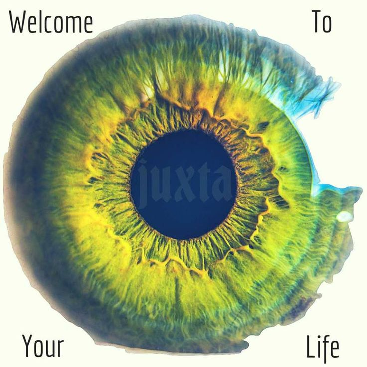 Ralph's Life Indie Music Blog: JUXTA