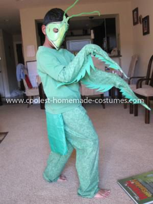 "Homemade Praying Mantis Costume: It all started when my 7 year old son watched  the series "" Monster bug wars"" on science channel and got totally into bugs and then reading books about"
