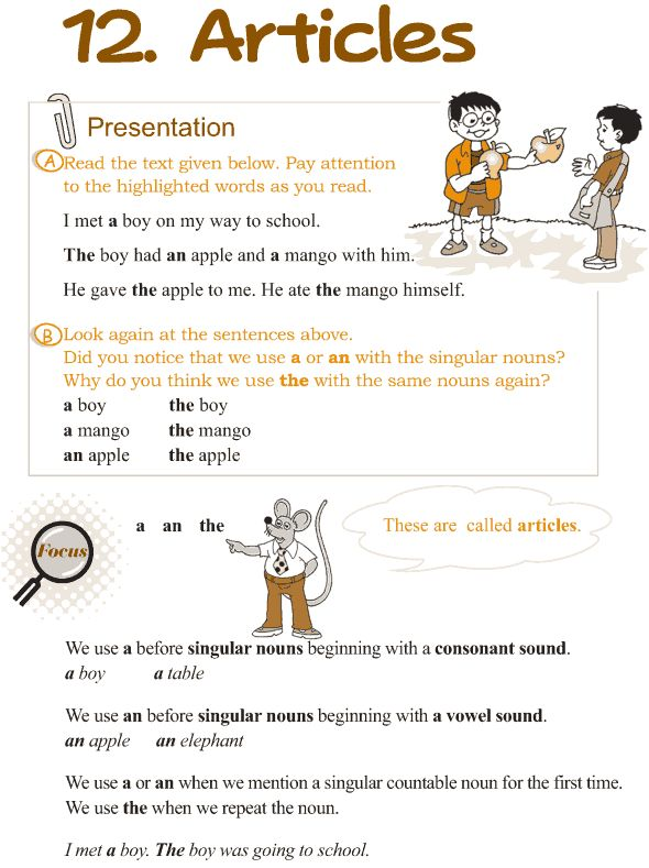 Grade 3 Grammar Lesson 12 Articles