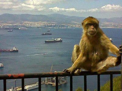 Travel Tips and Destinations Blog: Visit Gibraltar by Watching Videos