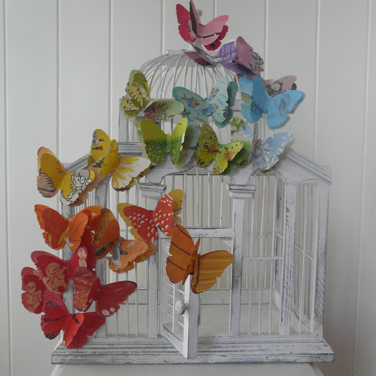 A Cage of Butterflies Essay Sample