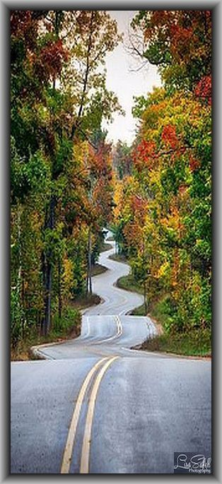 ROAD in WISCONSIN USA  #by Lisa Saffell on flickr