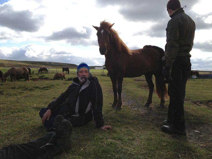 Rida i Island  i en vecka med ca. 40 lösa hästar. Några av deltagarna tar en paus. Bästa semestern!