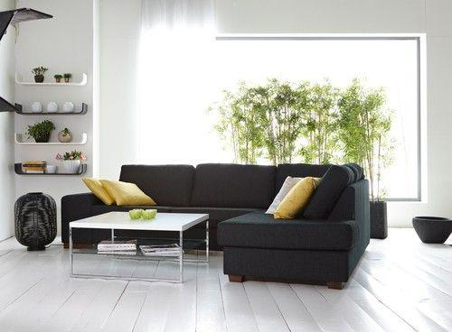 Snygga hyllor och växter bakom soffan