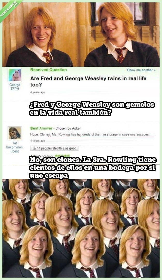 ¿Fred y George Weasley son gemelos en la vida real?   Gracias a http://www.vistoenlasredes.com/   Si quieres leer la noticia completa visita: http://www.estoy-aburrido.com/fred-y-george-weasley-son-gemelos-en-la-vida-real/