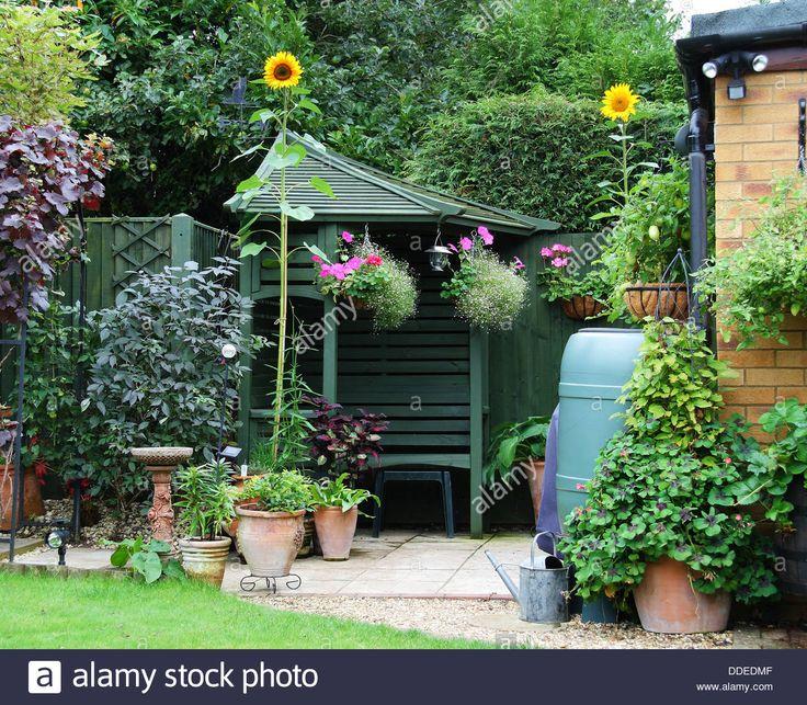 english-back-garden-patio-area-with-gazebo-and-sunflowers-DDEDMF.jpg (1300×1137)