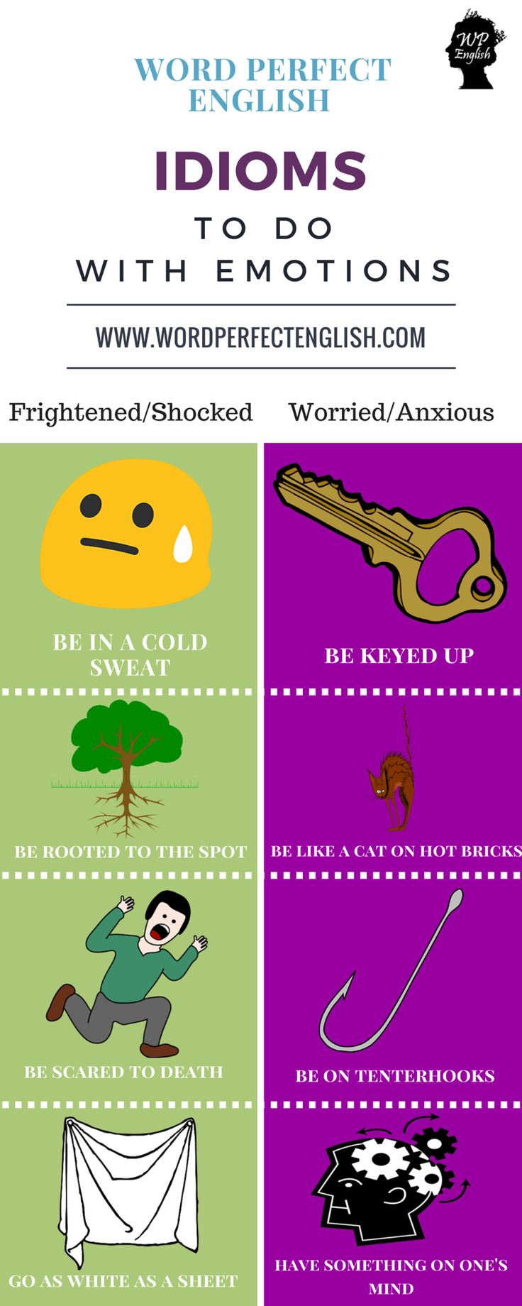 Idioms to do with Emotions 3/4