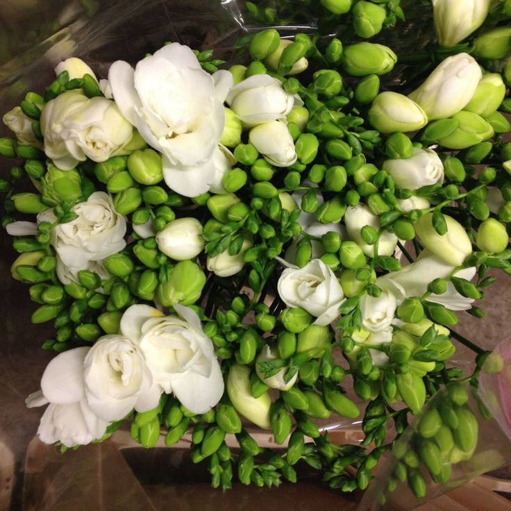 White Freesia's called 'Volante' Sold in bunches of 20 stems from the Flowermonger the wholesale floral home delivery service.