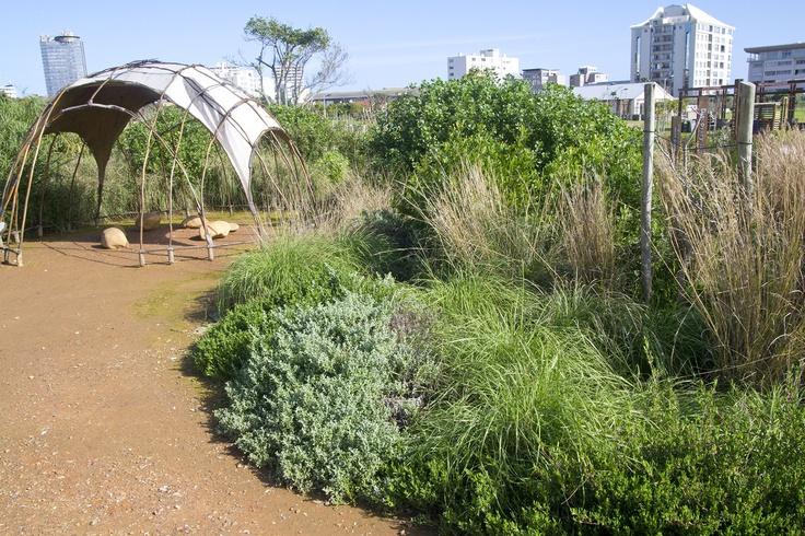 Biodiversity Garden in Green Point