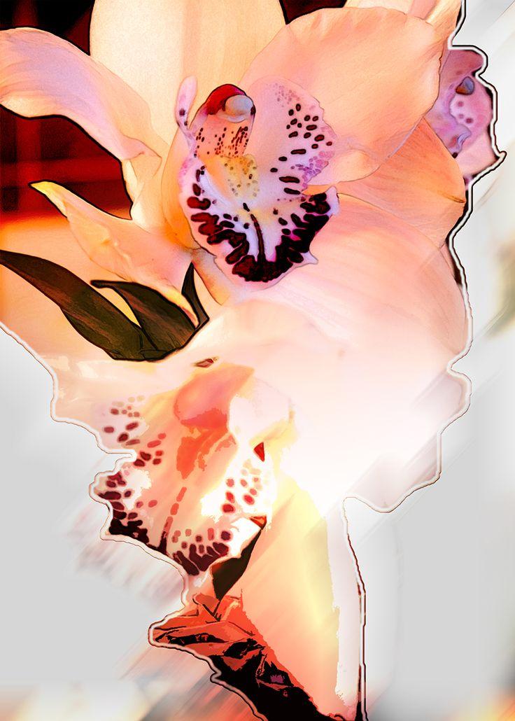 Flower card - Kukkakortti