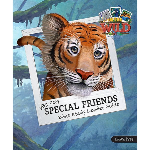 Special Friends Leader Guide In The Wild Vbs By Lifeway Special Friend Vbs Bible Study Leaders