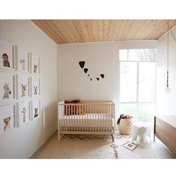 735 best images about modern baby nursery on pinterest for Funky nursery ideas