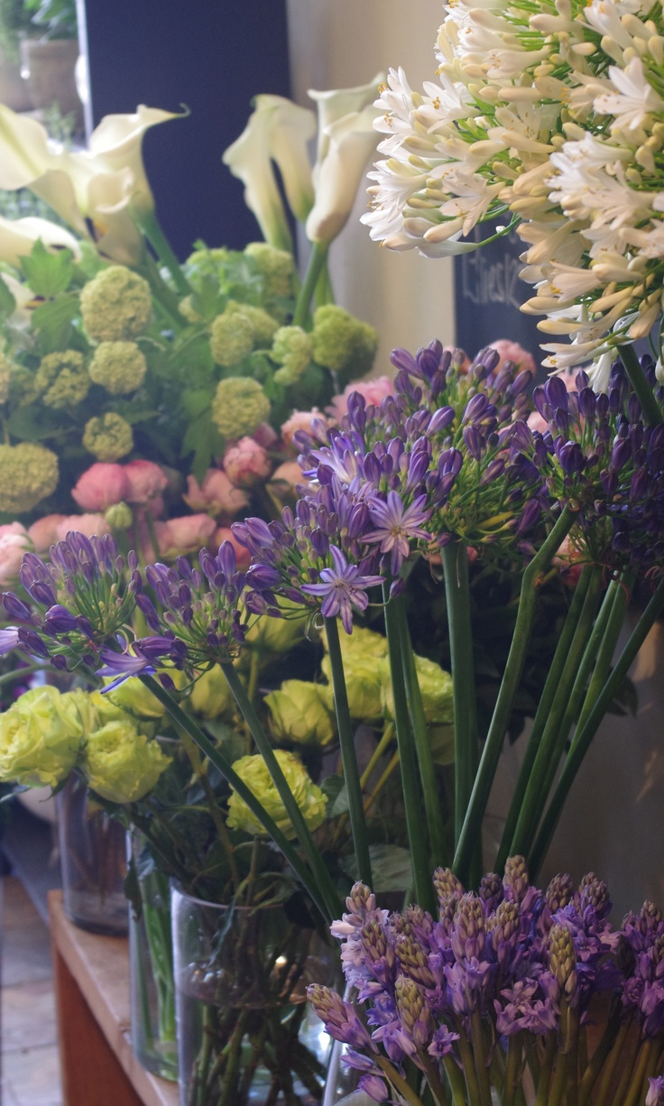 78 best the flower shop images on pinterest florists floral flowers at botany floral studio izmirmasajfo
