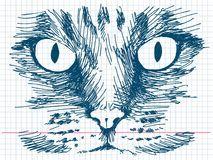 Hand drawn cat Royalty Free Stock Photos