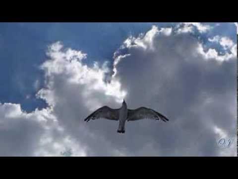 Romantic Sax - Eugen Doga -