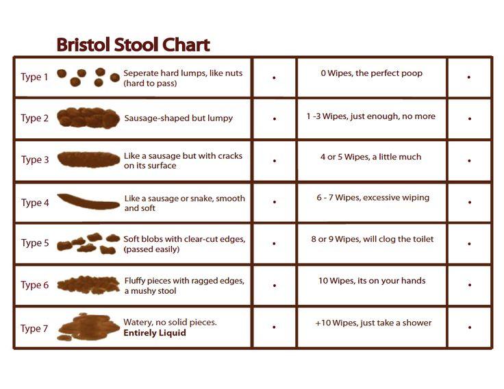 Bristol's Stool Chart | Bristol stool chart, Stool, Gaps diet