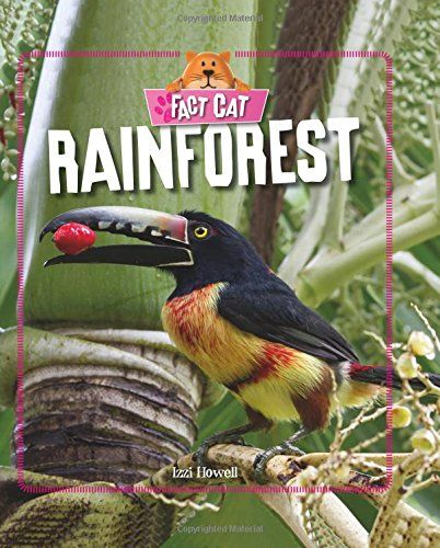 Tropical rainforests represent the oldest major vegetation type still present on the terrestrial Earth. Like all vegetation, however, that of the rainforest continues to evolve and change, so modern tropical rainforests are not identical with rainforests of the geologic past.