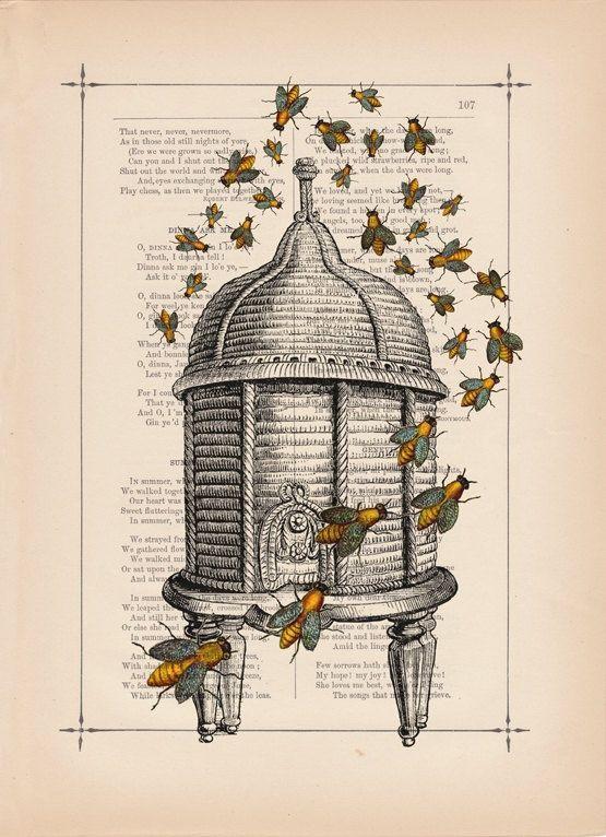 Lovely Beekeeping Historical Print Bee SkepBee