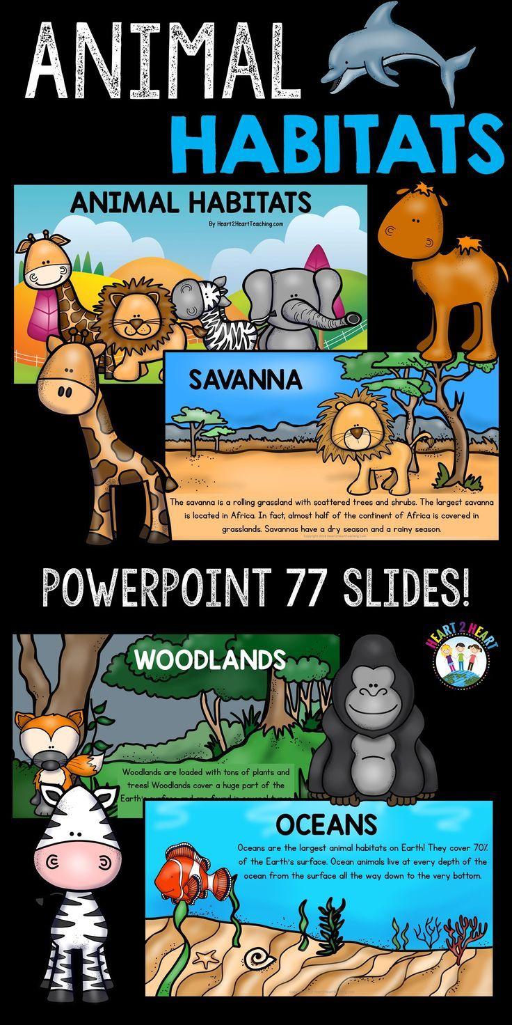 Animal Habitats PowerPoint: Woodlands, Wetlands, Tundra, Grasslands, Desert