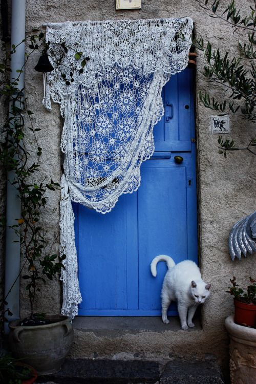 Lace over blue door with white kitty