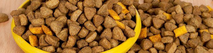 Dog Food Analysis & Scoring, Dog Food Comparison  