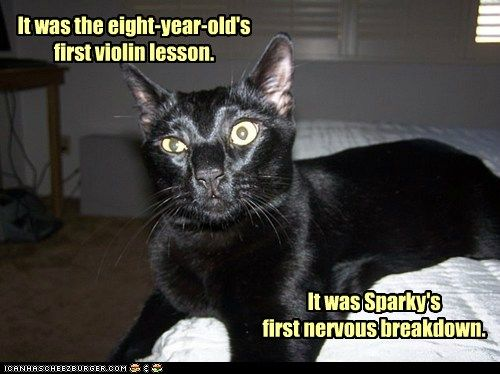 It was the eight-year-old's first violin lesson.  It was Sparky's first nervous breakdown.