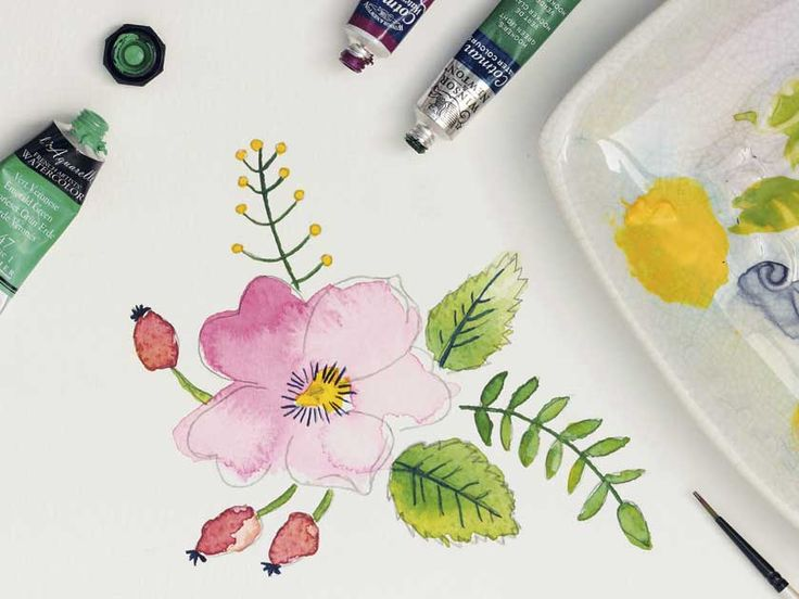 how to draw a flower and paint it with watercoour