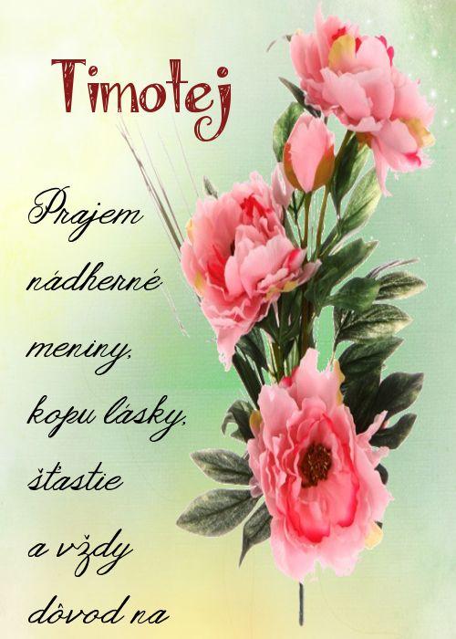 Timotej Prajem nádherné meniny, kopu lásky, šťastie a vždy dôvod na úsmev...