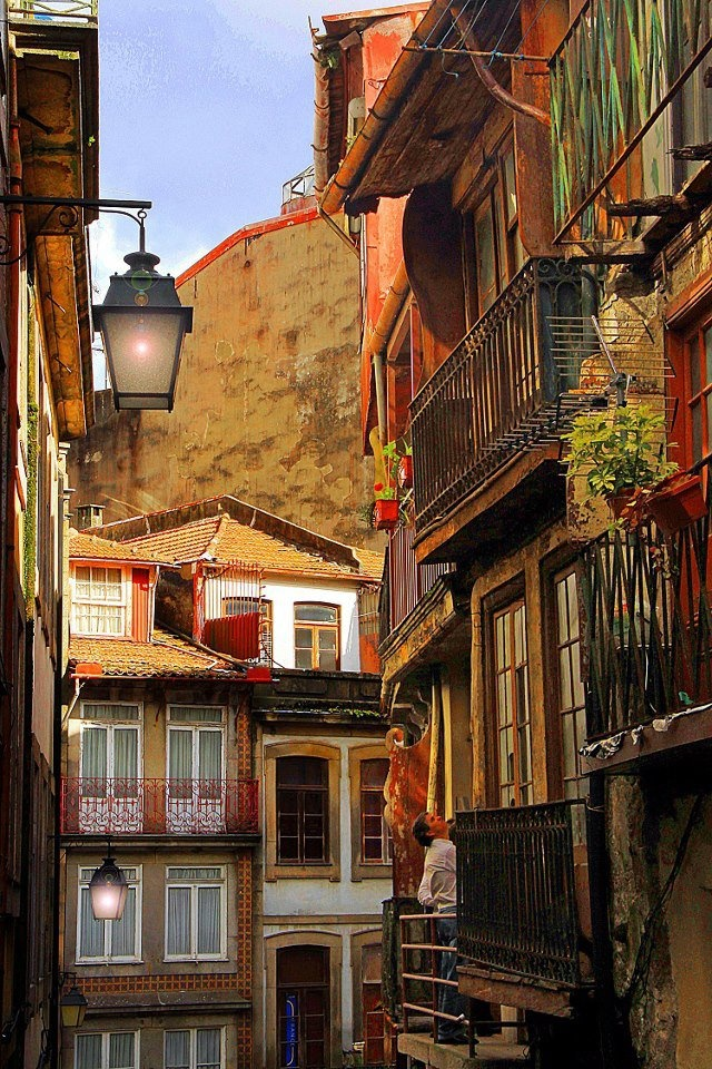 Lovely street in Porto city by Manuel Meneses http://www.facebook.com/oportocity