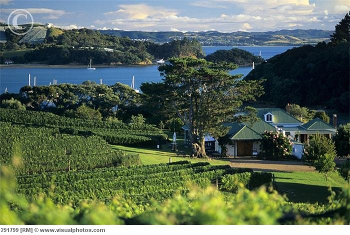 Goldwater Estate, Waiheke, New Zealand