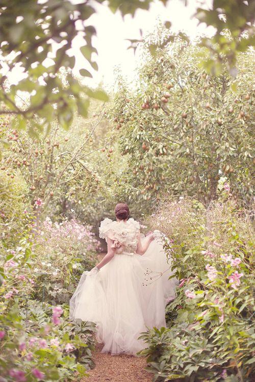 Secret Garden: 1000+ Images About Sugar Plum Fairy Events On Pinterest