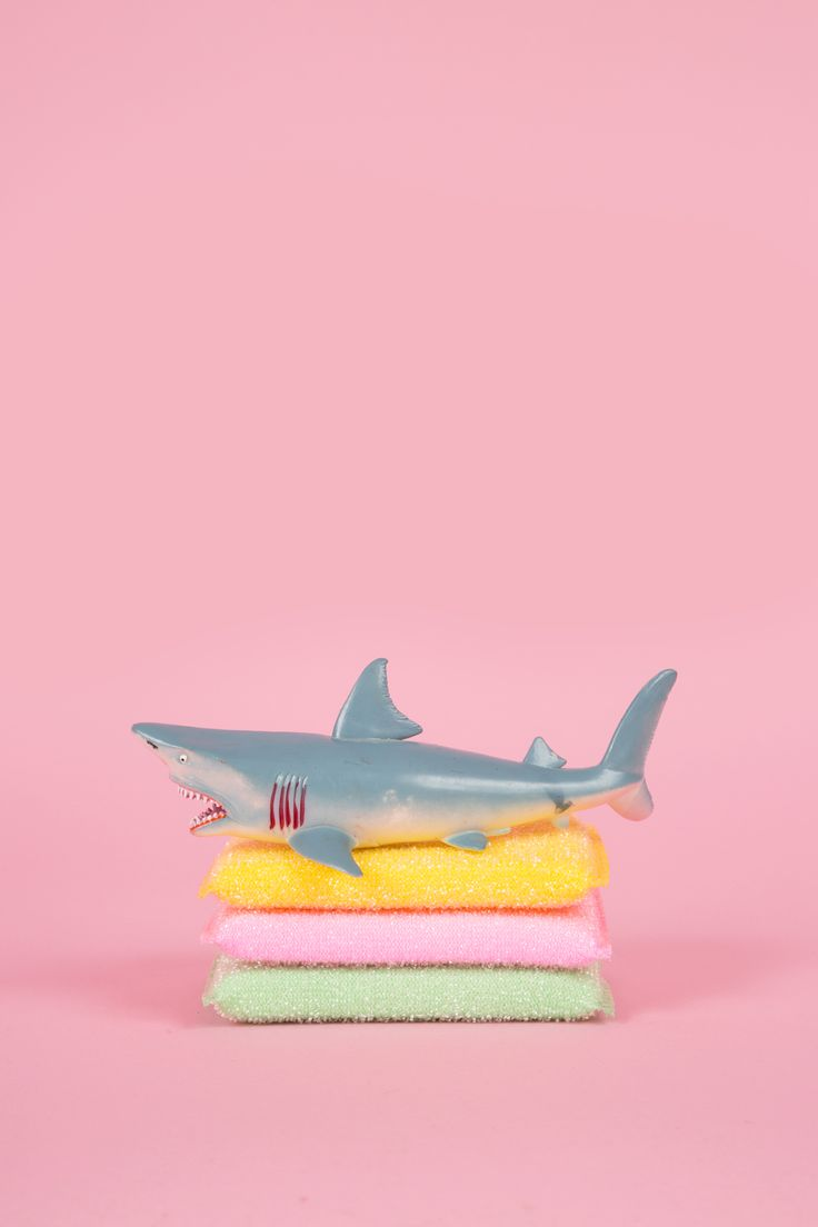 ♡ Art Direction : Pink and a shark