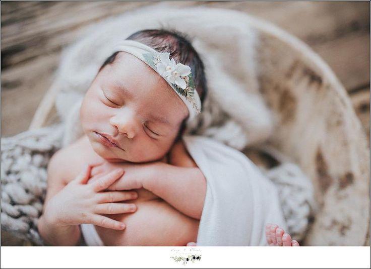 V newborn sun prairie twig olive photography