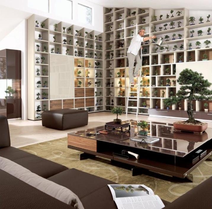 office bonsai. bonsai empireu0027s office wwwbonsaiempirecom design b