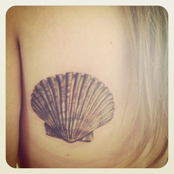 seashell tattoo. Not this shell, maybe sand dollar?