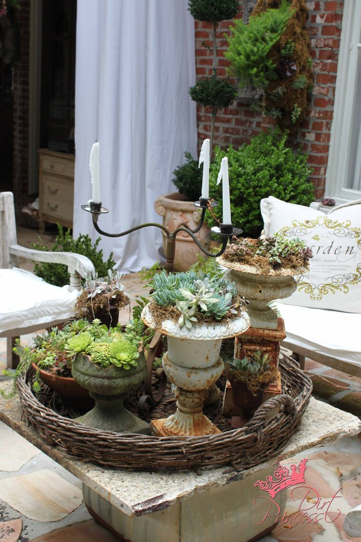 succulents in  rusty urn and other small containers, combined with candlebra on a tray