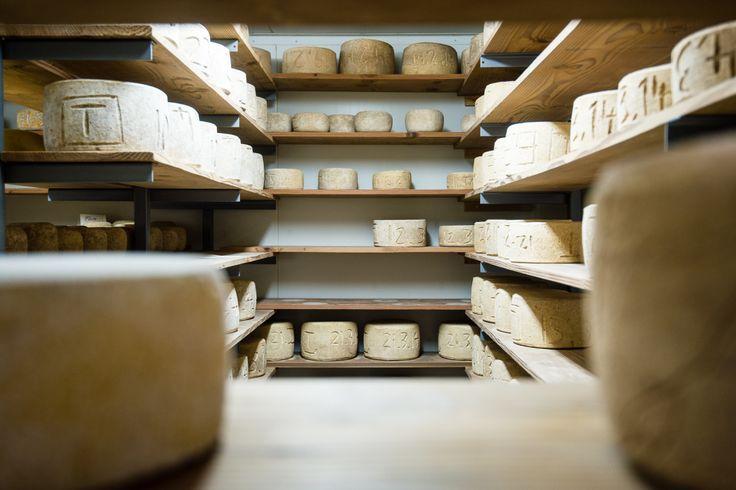 A great stop on any Bruny Island - the Bruny Island Cheese Company. #cheese #brunyisland #tasmania #discovertasmania Image Credit: livingintasmania