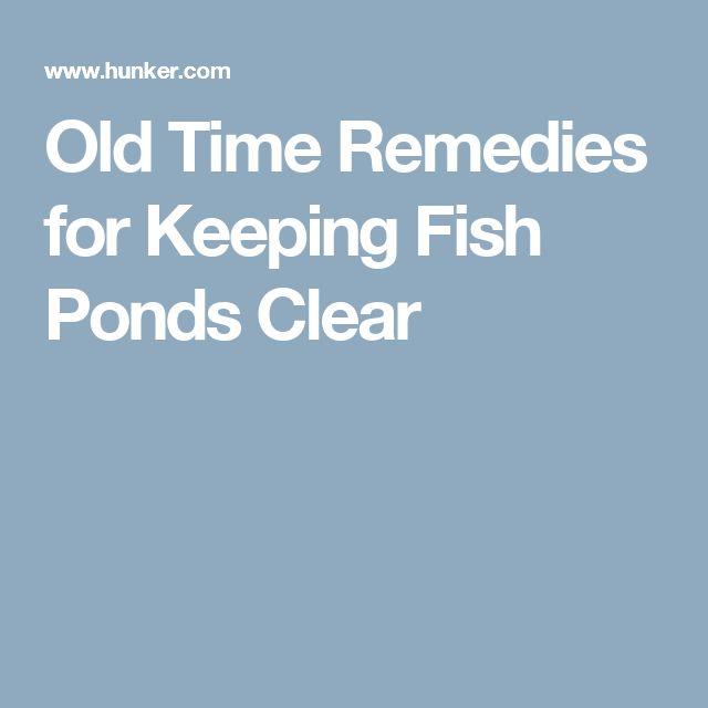 Best 20 Fish Ponds Ideas On Pinterest Pond Kits Koi