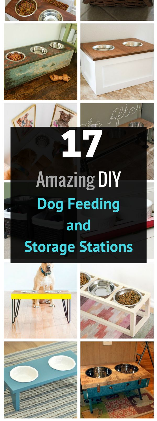 136 best images about home remedies pets on pinterest