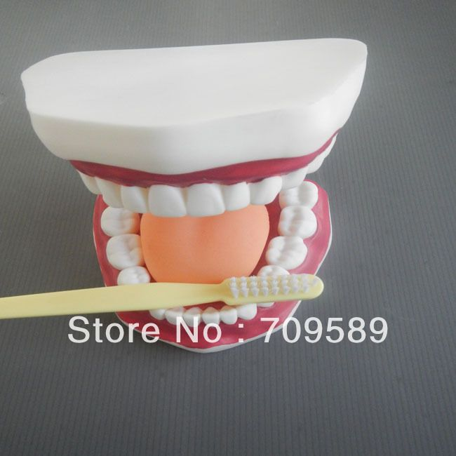 Стоматологическая помощь модель, Уход за полостью рта модель, И