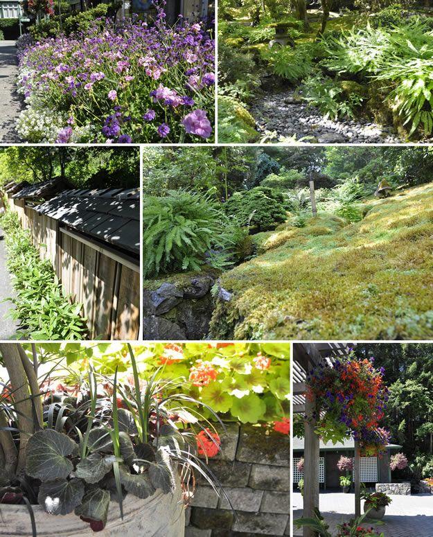 Garden Design Victoria Bc 123 best butchart gardens, victoria, british columbia, canada