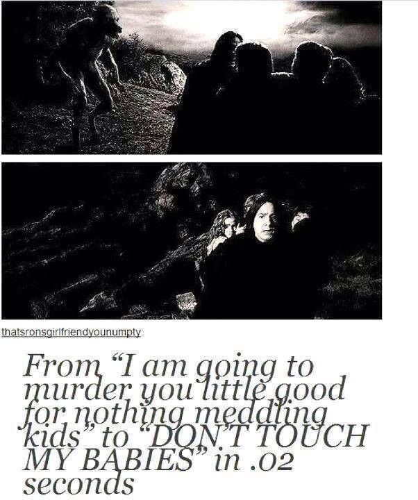 Harry Potter funny hahaha i don't know why i laughed so hard at this... DON'T TOUCH MY BABIES haha