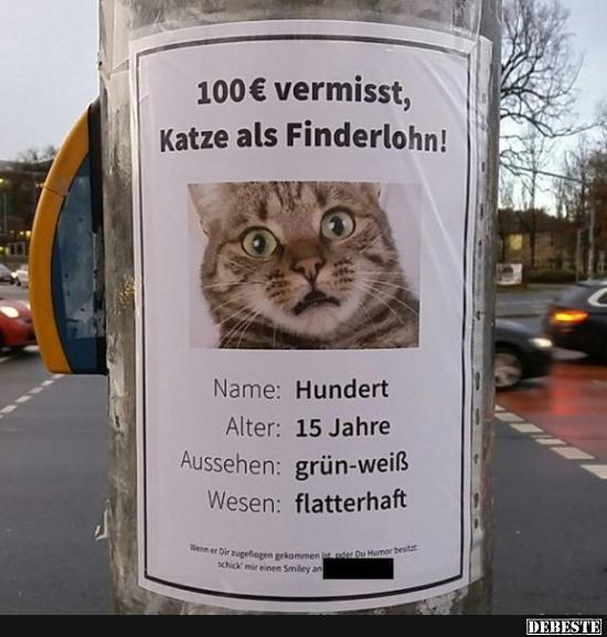 100 Euro vermisst, Katze als Finderlohn..   Lustige Bilder, Sprüche, Witze, ech…