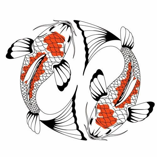 258 best images about feng shui on pinterest koi art for Looking after koi