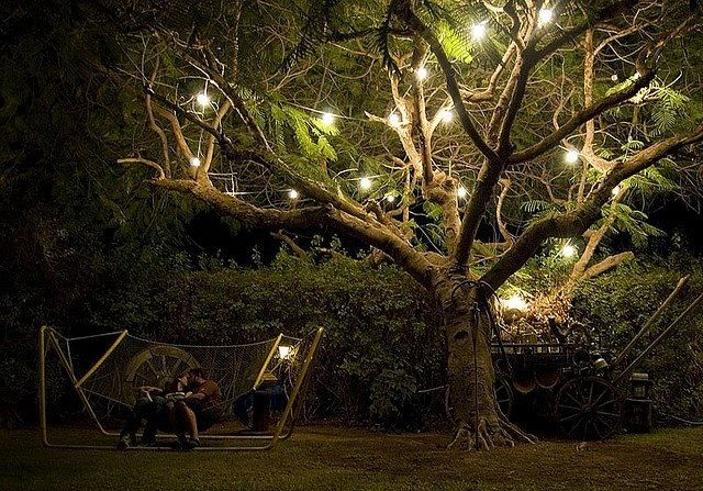 Outdoor tree lights let there be light pinterest trees the o 39 jays and the tree - Night yard landscaping with outdoor lights ...