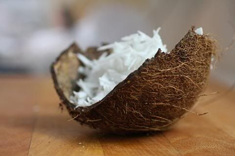 "Javanese people find the benefit almost in every part of coconut tree from its root, trunk, leaf, fruit, fruit shell, fruit water, even its flower. For yummy food to a kind of an alternative fuel.     ""Notable Parts of Coconut Tree and Its uses"" http://www.healthydp.com/benefits/coconut-tree.html"