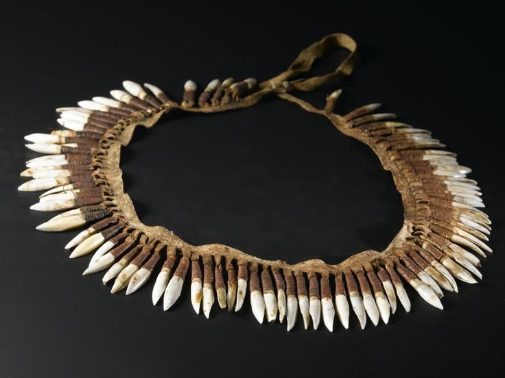 Kangaroo incisor ornament of eighty eight kangaroo teeth suspended from a strip of dressed kangaroo skin by loops: Oceania, Australia, Victoria, Australian Aboriginal, 1850 - 1860 Necklace