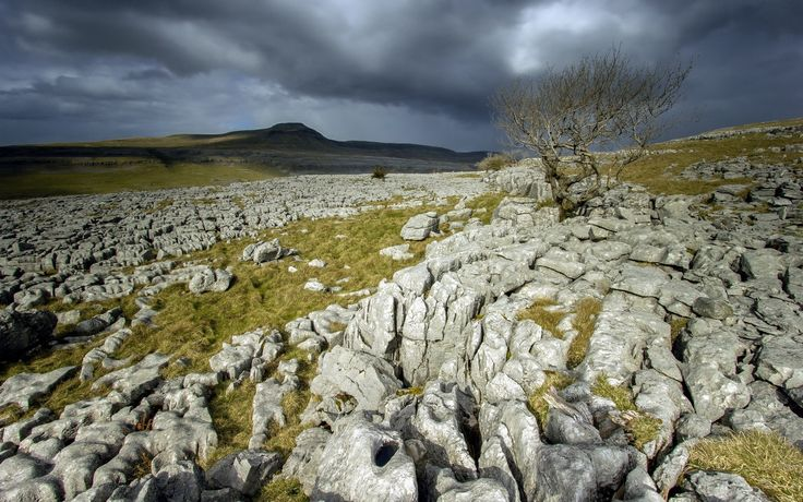rocky field - Yahoo Image Search Results